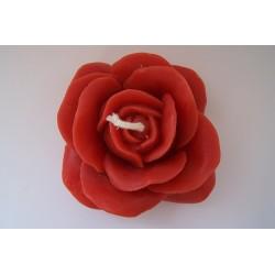 Grande rose rouge